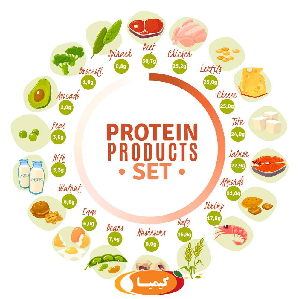 تاثیر پروتئین ها در درمان زخم